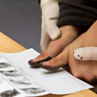 Ink and Roll Fingerprinting